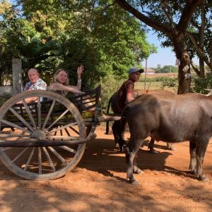 We took a nice tour through the country in a water buffalo cart.  It was really beautiful and tranquil.
